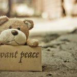Balada ursuletului de plus sau despre empatie